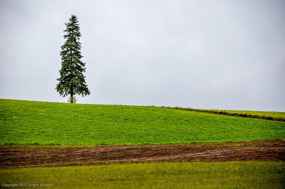landscape_330