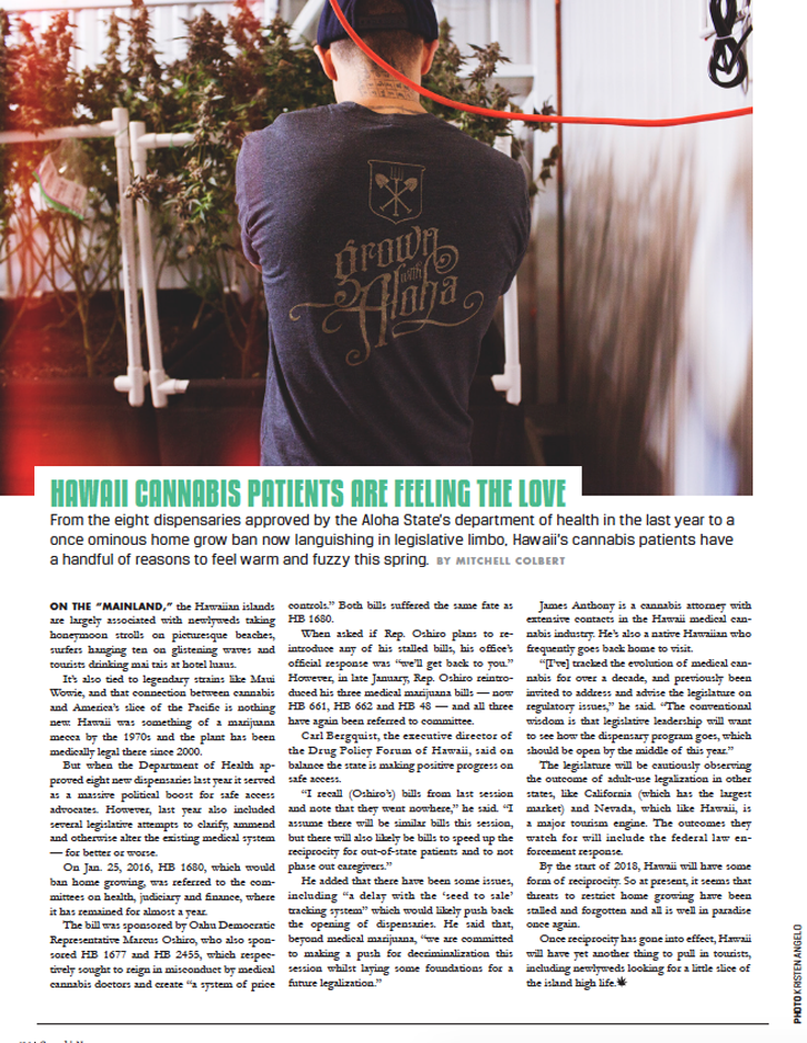 Cannabis Now, Issue 25