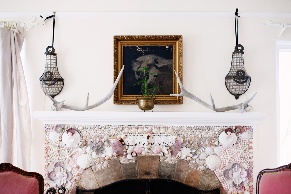 Cannabis plant on mantel