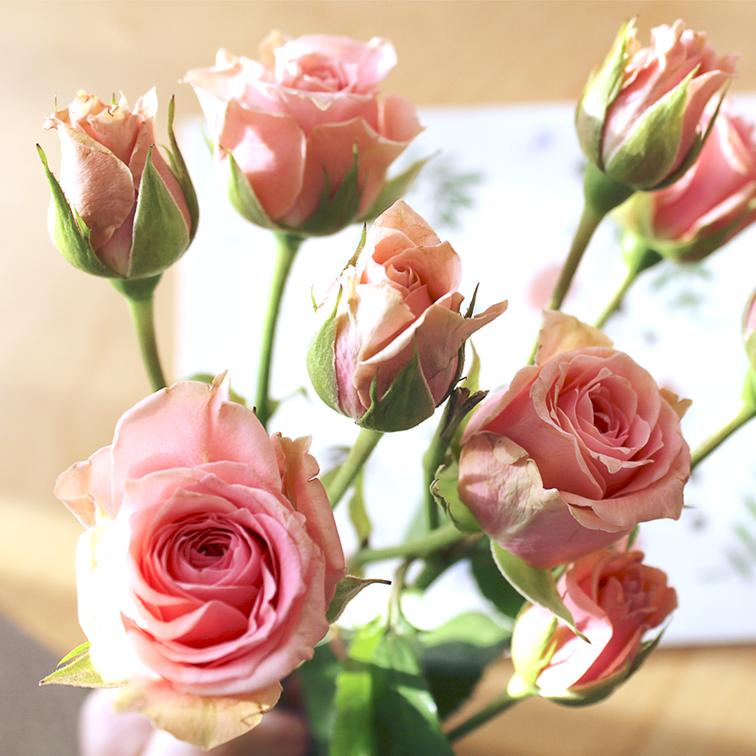 floralfebruary