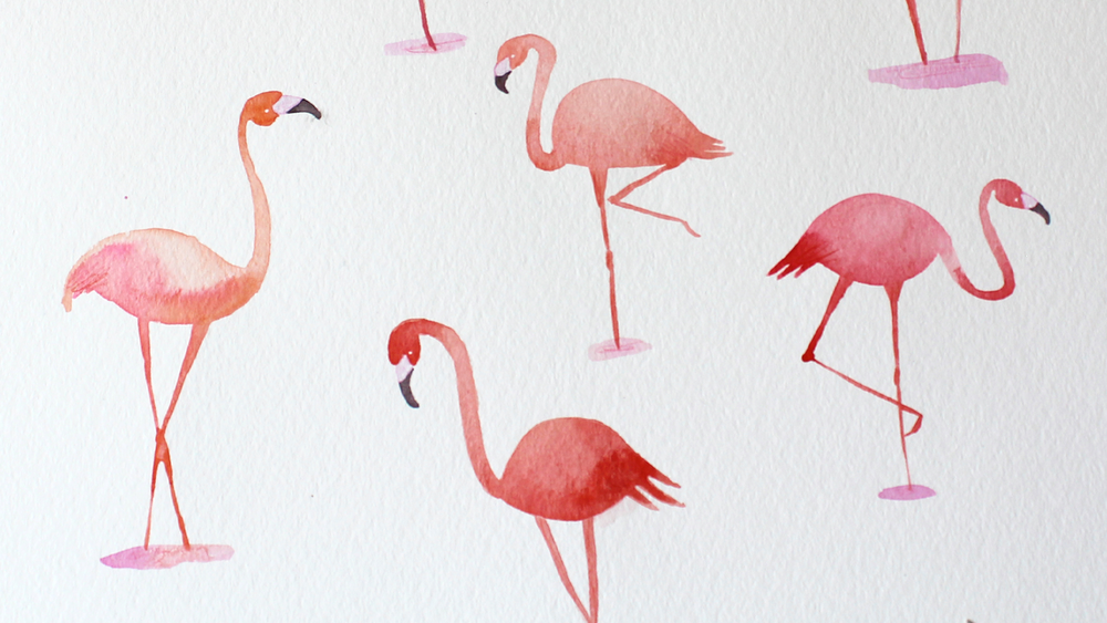flamingo4.png