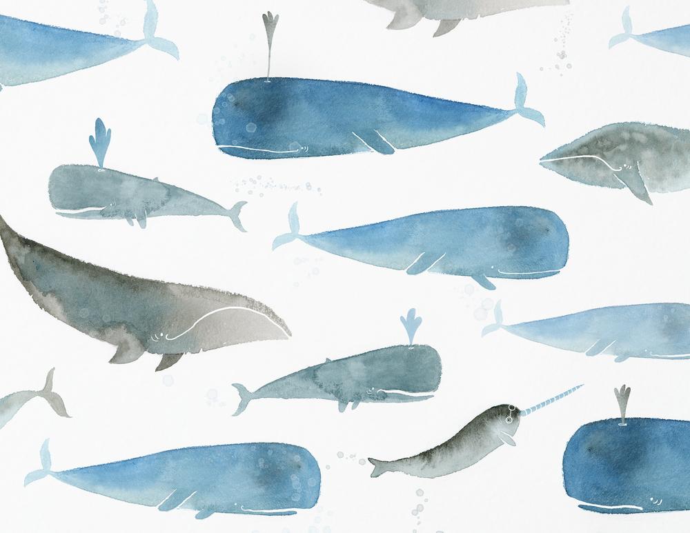 portfolio_pattern_whales.png