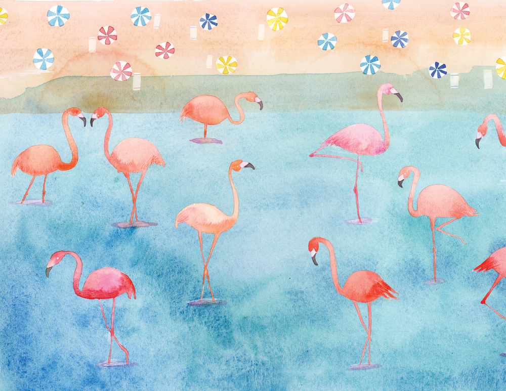 portfolio_kids_flamingo2.png