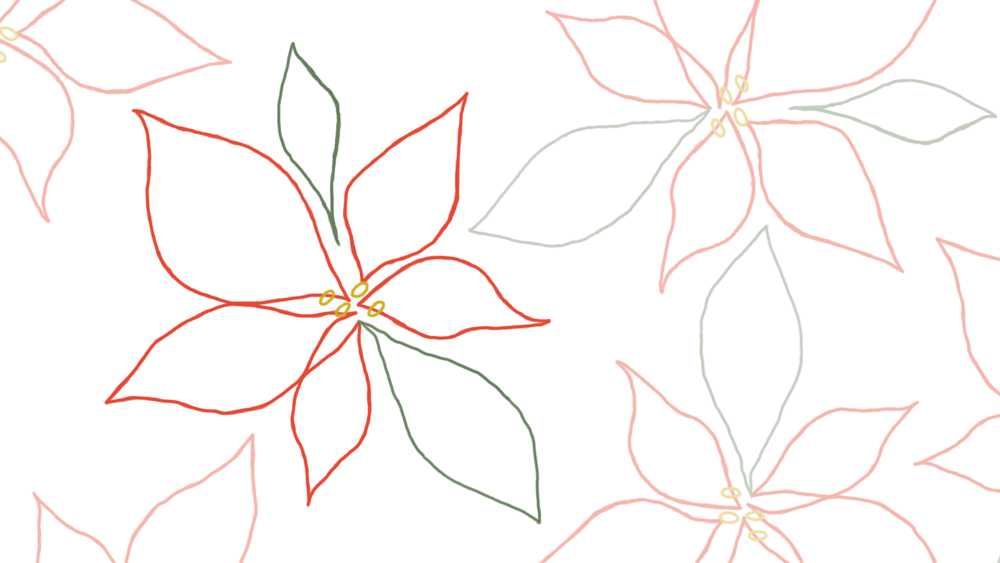 poinsettia_trace.png