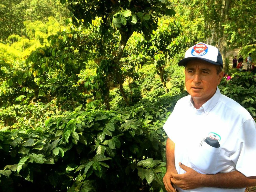 Don Arnoldo, the farm manager at Finca San Jeronimo.
