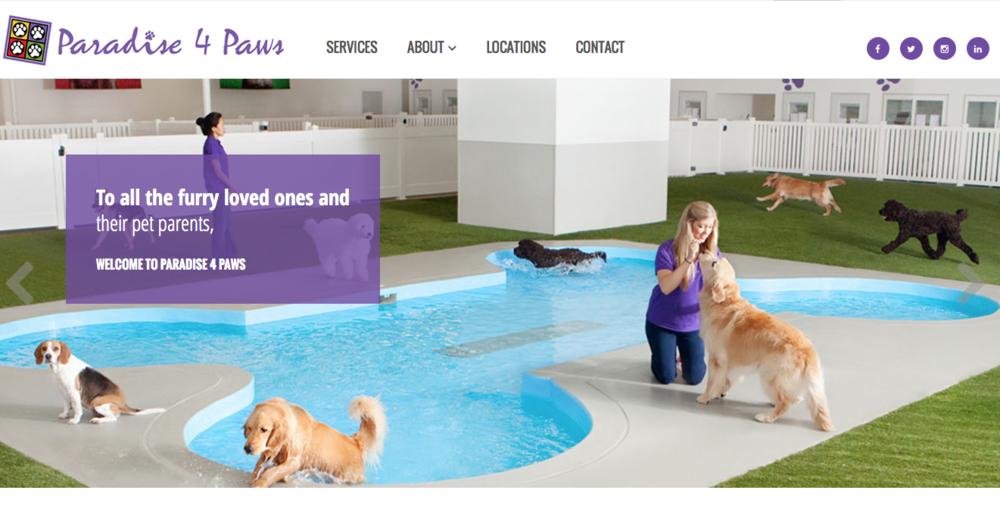 Paradise 4 Paws- Premium Pet Resort