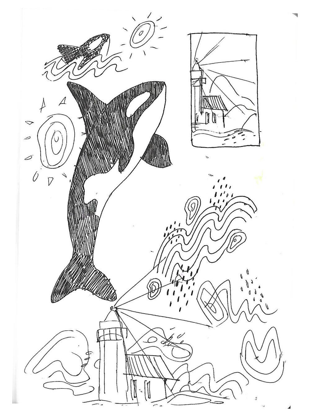 orcas process 2.jpg