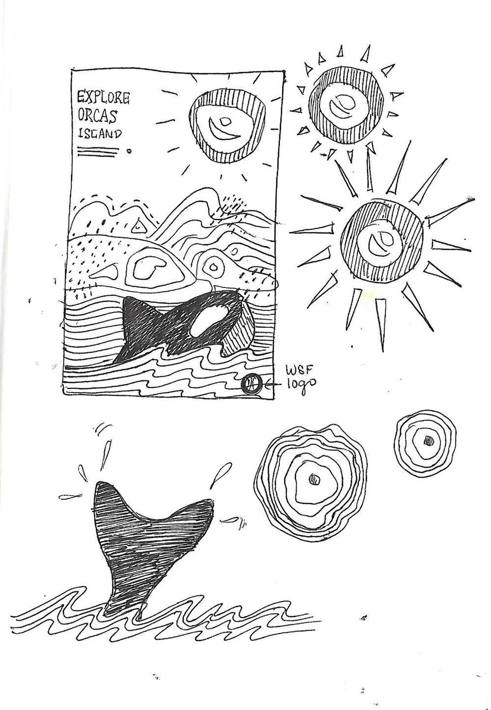 orcas process 3.jpg