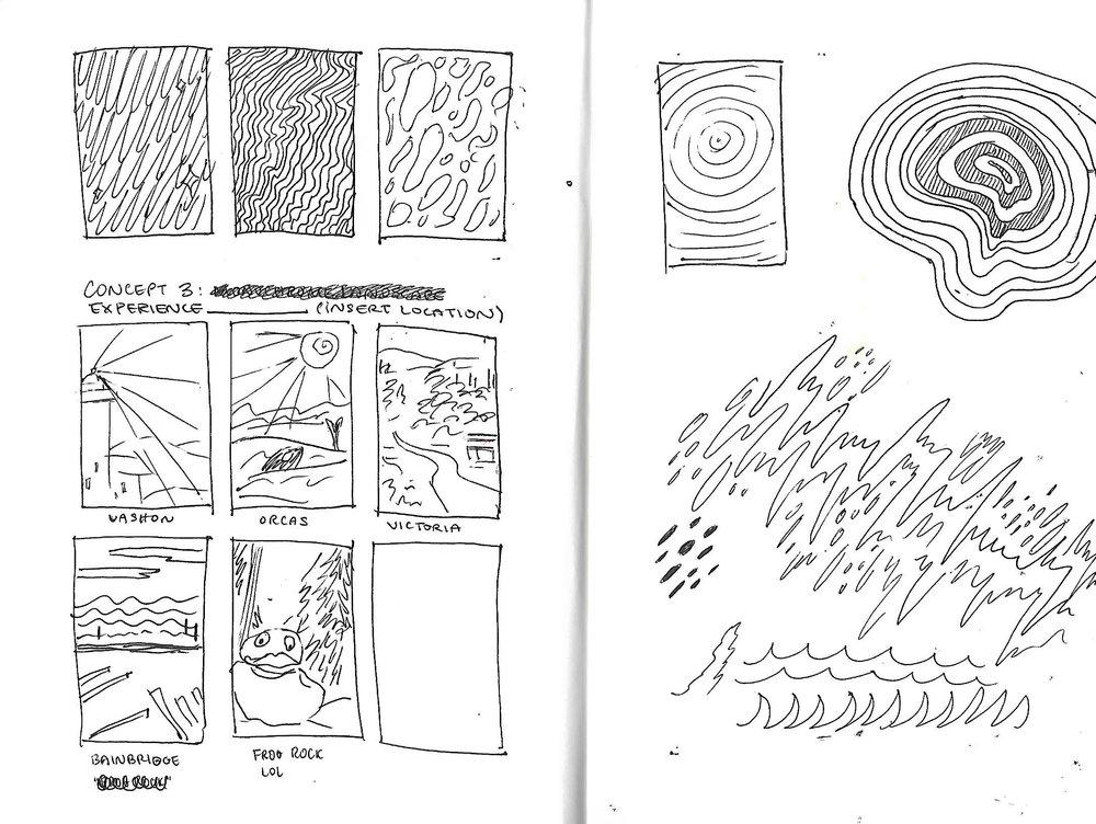 orcas process 5.jpg
