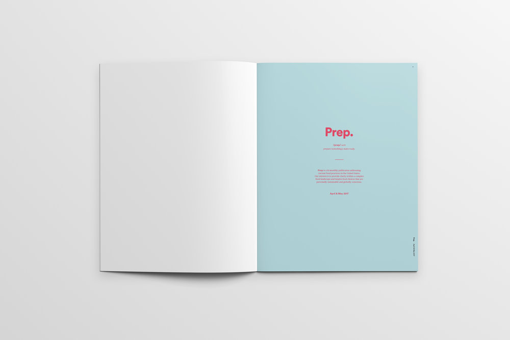Magazine_Mockup_Pages1.jpg