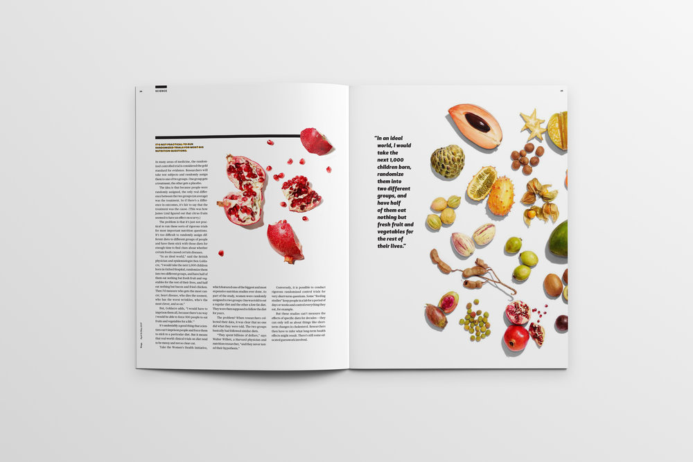 Magazine_Mockup_Pages24-25.jpg