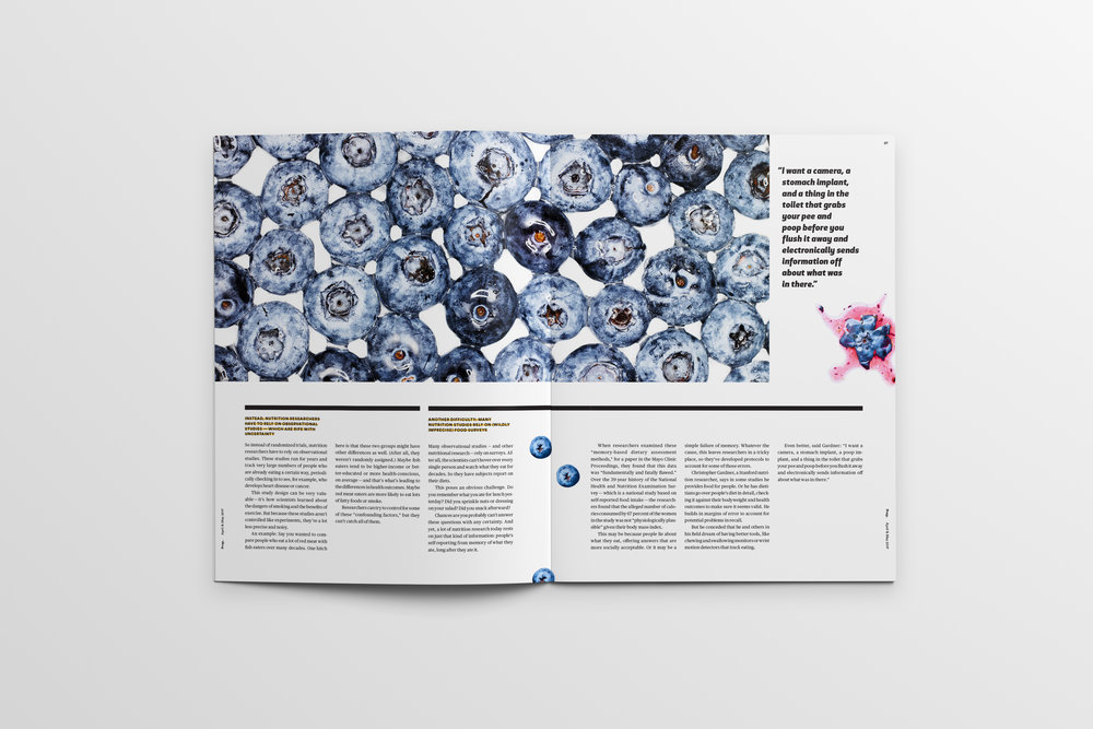 Magazine_Mockup_Pages26-27.jpg