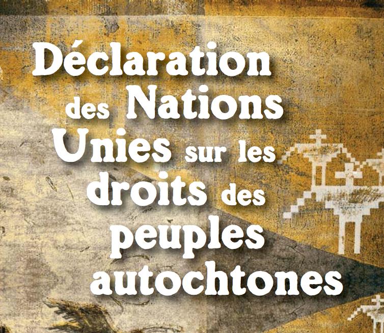 La Déclaration des Nations Unies sur les droits des peuples autochtones est l'instrument international le plus complet à traiter de leurs droits économiques, sociaux, culturels, politiques, civils, spirituels et environnementaux:   Lire Ici.