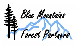 Blue Mountain Forest Partners LOGO.png