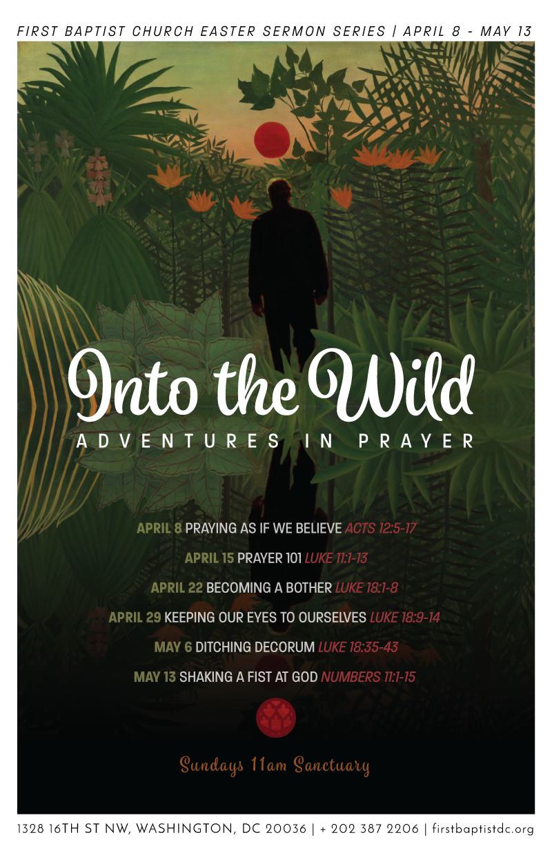 Into-The-Wild-poster-800.png