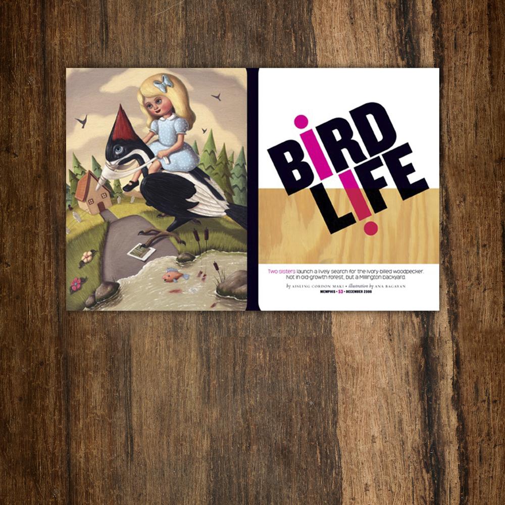 birdlife_on_wood.jpg