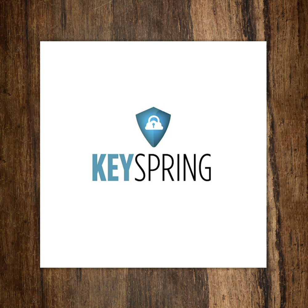Key_Spring_on_wood.jpg