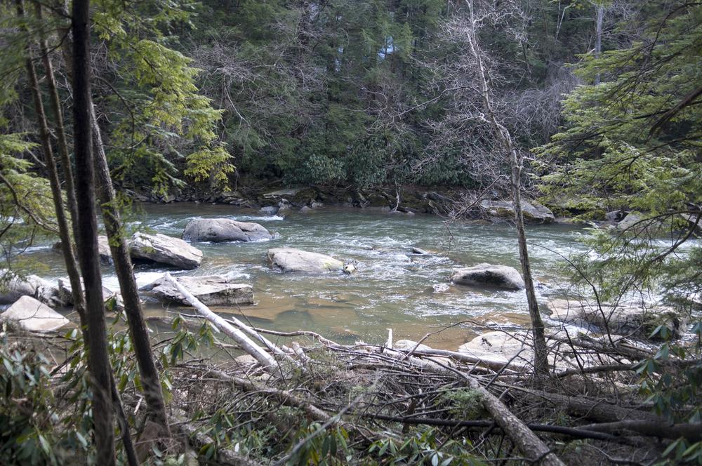 Day 71 - Swallow Falls Trail