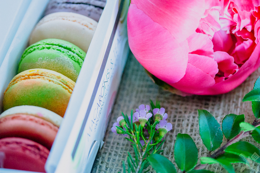 So many gorgeous macarons
