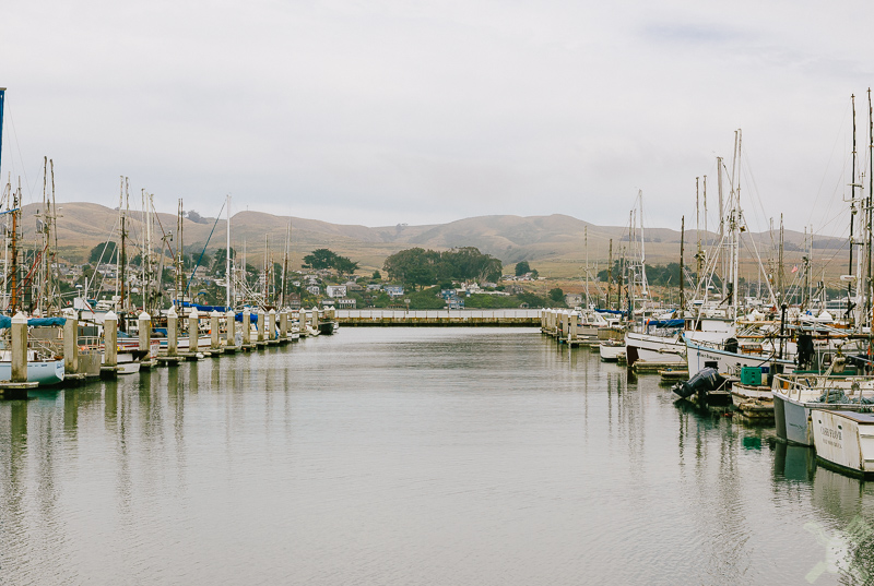 Bodega Bay, Spud Point Marina, with a lovely view of mountains behind.