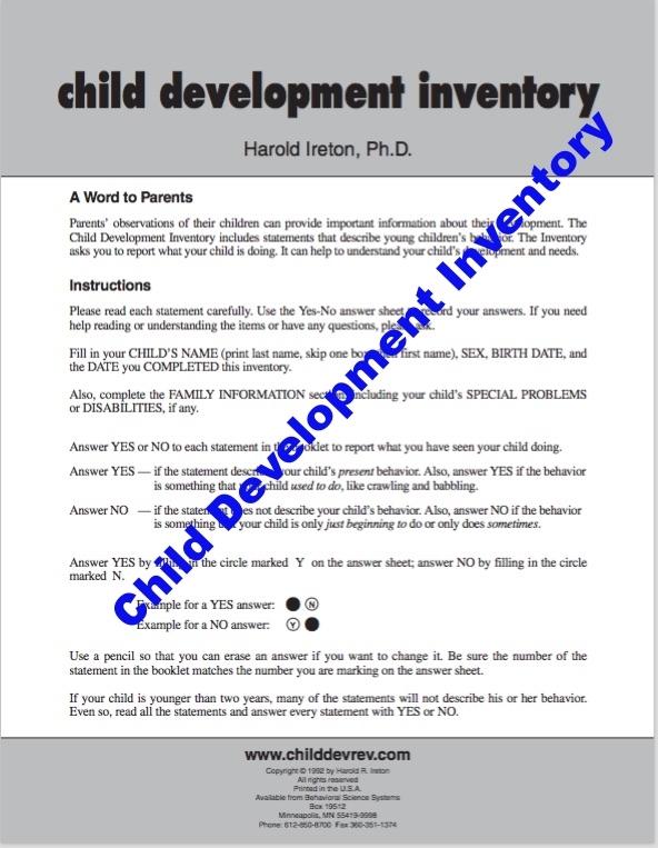 child development report sample