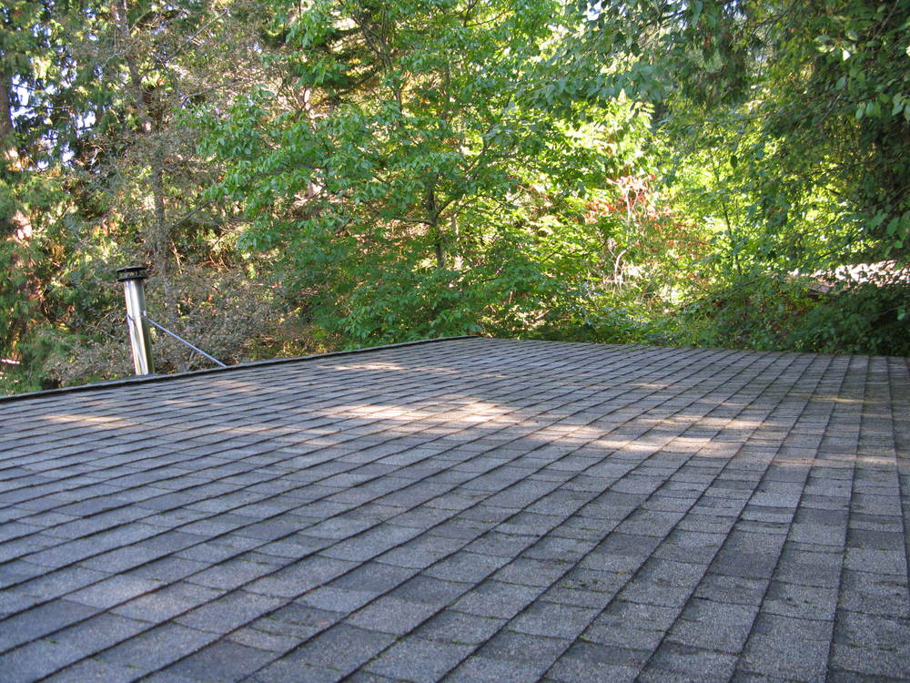 Roof After Moss Removal