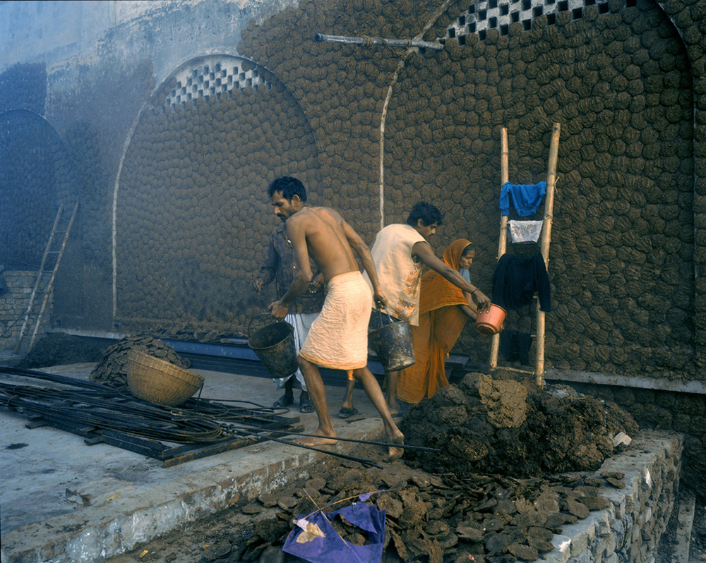 Making cow dung patties for fuel, India