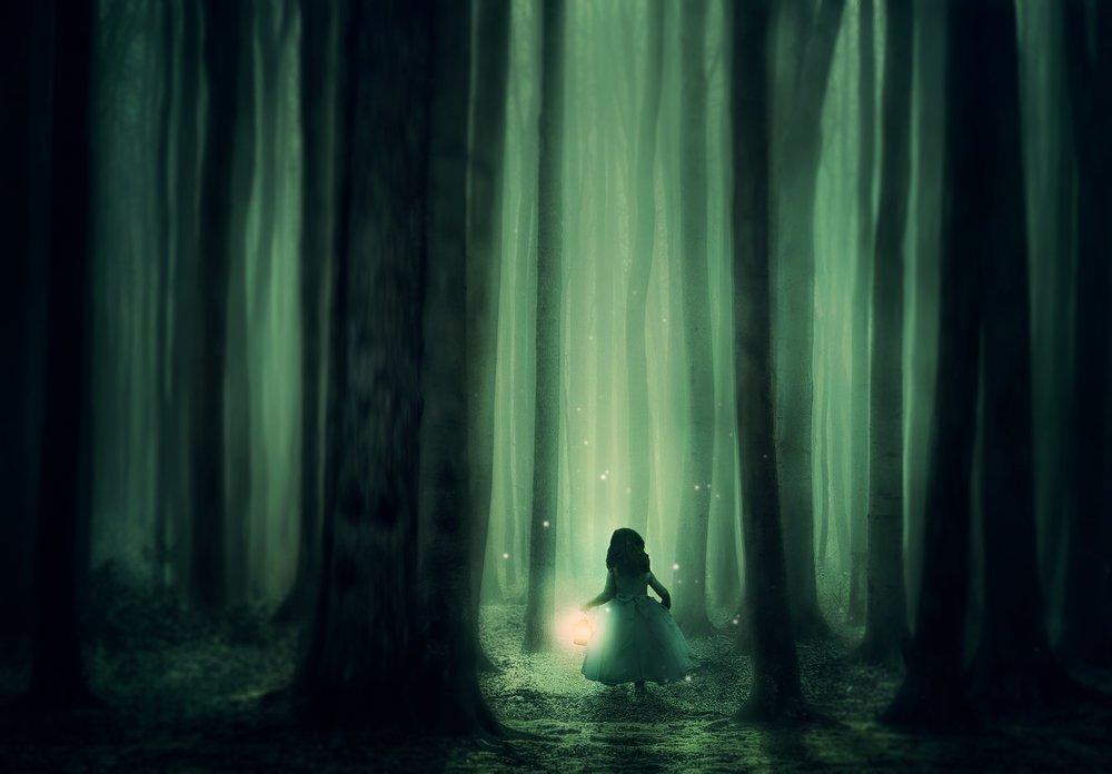 forest-3833973_1920.jpg