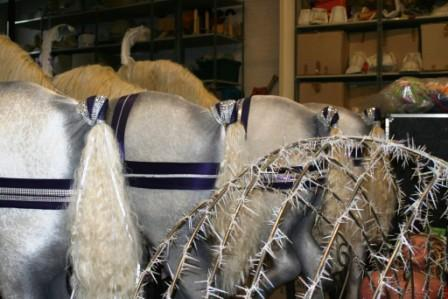 Four horse's 'bums' in a row, ready for Cinders' carriage