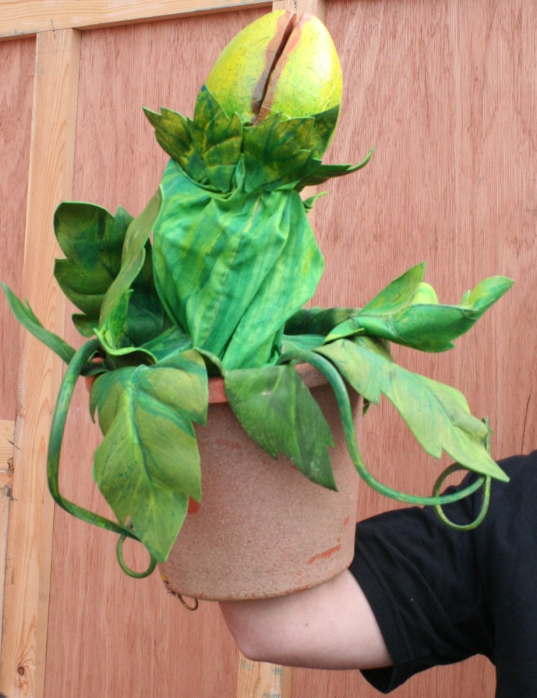 Plant-1-(02).jpg