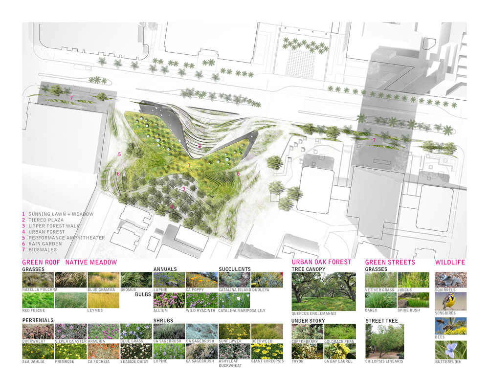 TINA CHEE_landscape studio_BIR 7 roofplan.jpg