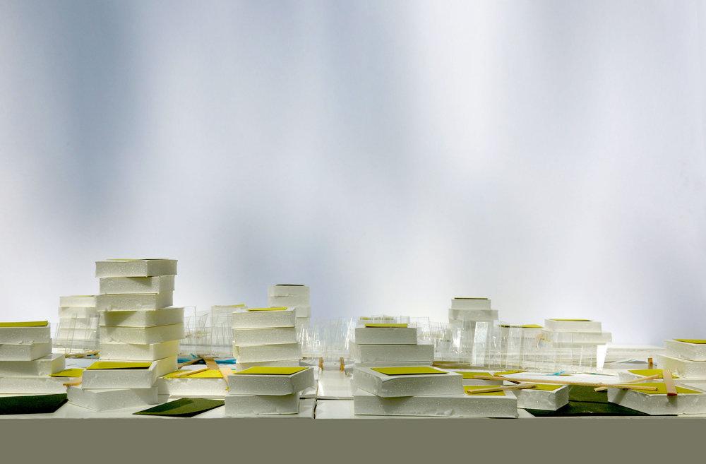 TINA CHEE_landscape studio_ccc_elev.jpg