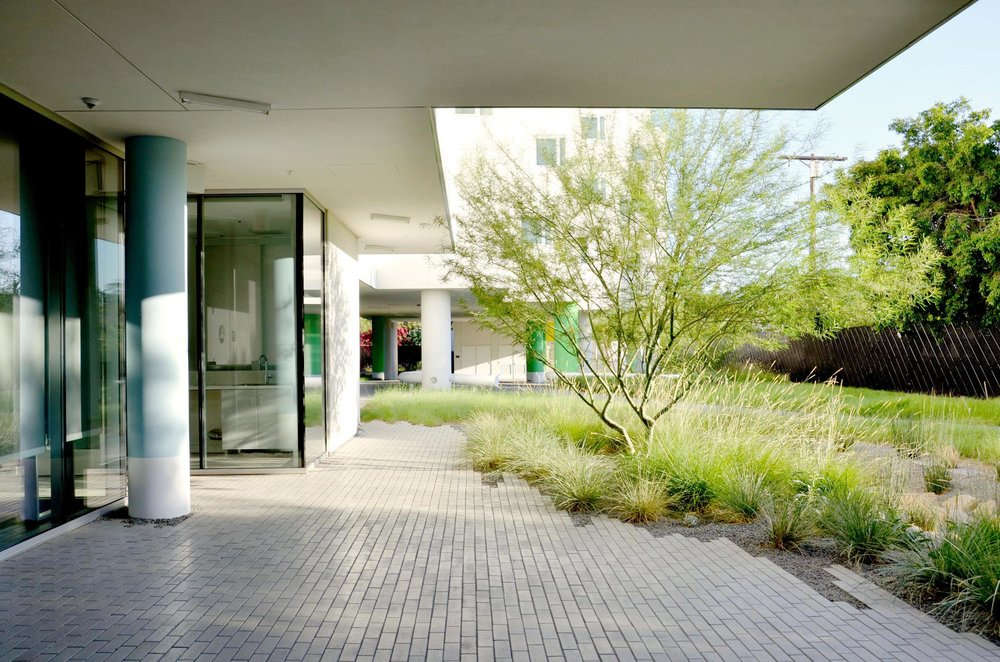 TINA CHEE landscape studio_Crest Apartments_04.jpg