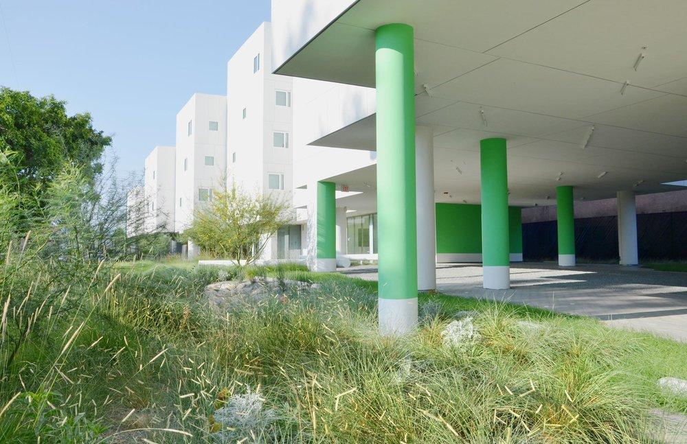 TINA CHEE landscape studio_Crest Apartments_08.jpg