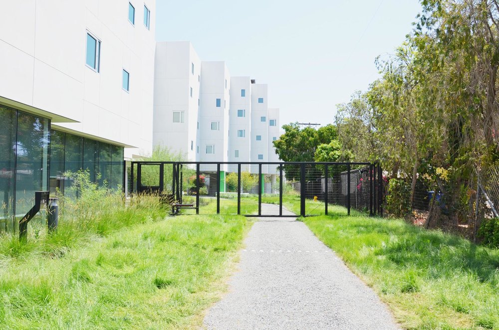 TINA CHEE landscape studio_Crest Apartments_03.jpg