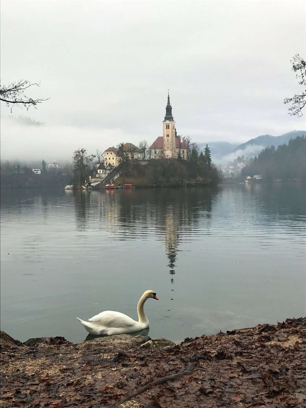 The Church on the Island in Lake Bled