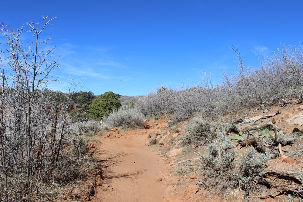 Leave Echo Canyon and you'll find a desert path leading to Observation Point