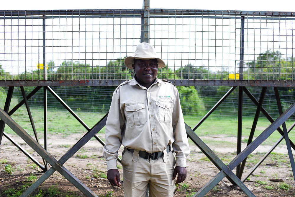Martin has worked at the chimpanzee sanctuary at Ol Pejeta for 12 years.