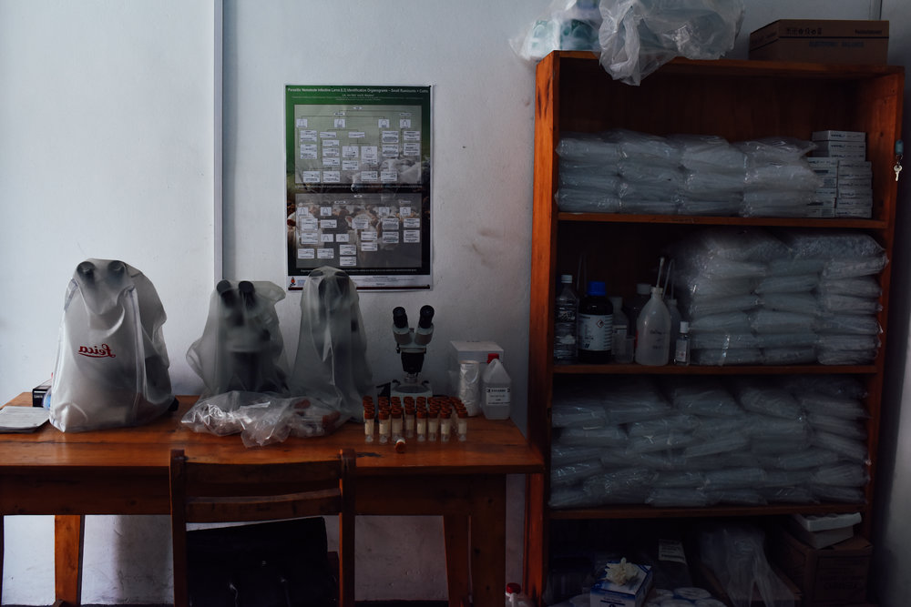 A current lab at the research center. At the current facility, the Fossey Fund is limited in the type of laboratory analysis it can do. At the new research center, they will be able to expand their science and research work.