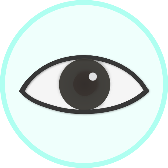 icon_eye'.png