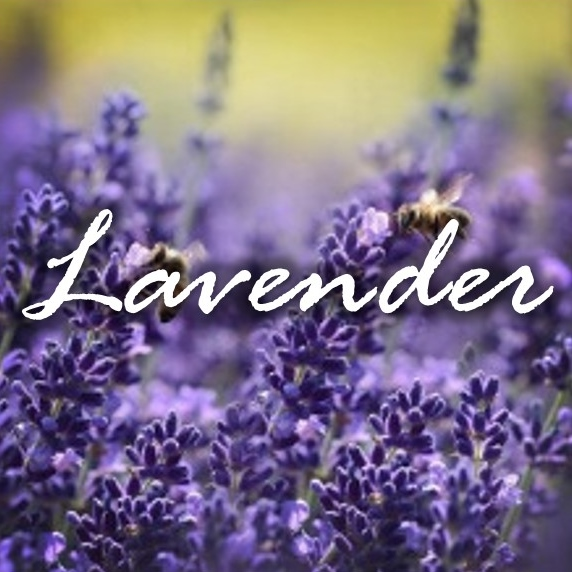 Lavender FragTag.jpg