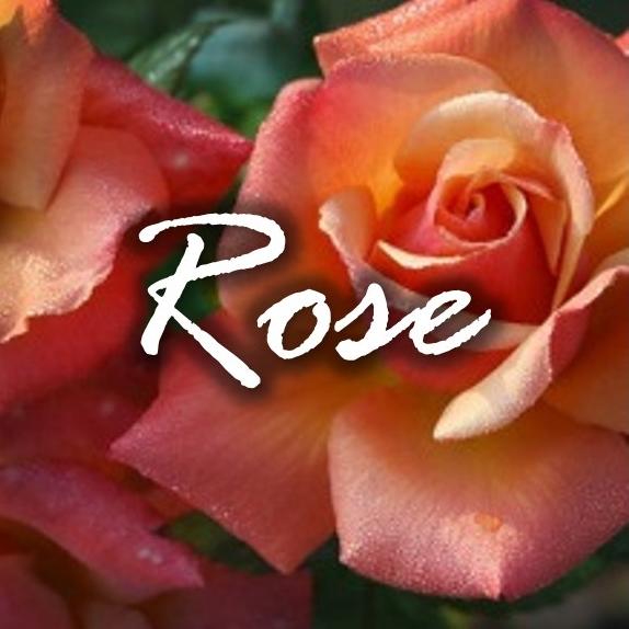 Rose FragTag.jpg