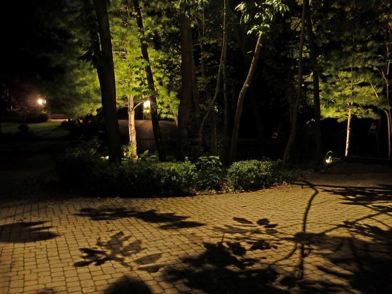 Moon-light driveway.jpg
