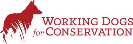 WorkingDogs_Logo_2015 RGB 450 x 150.png