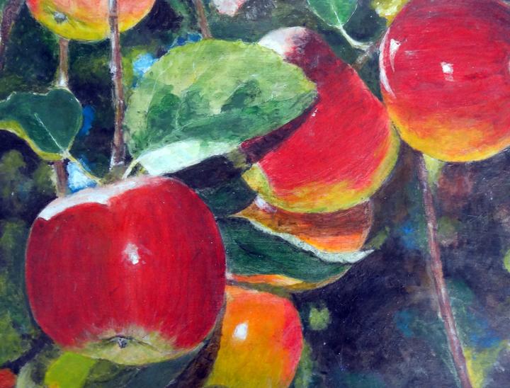 apple-tree-web.png