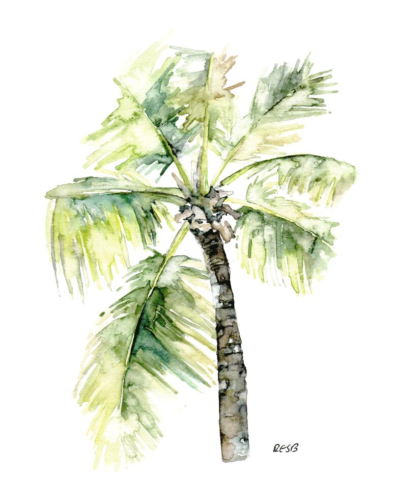 palm-tree-web.png