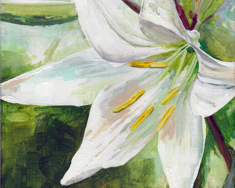 lily-8x10-web.png