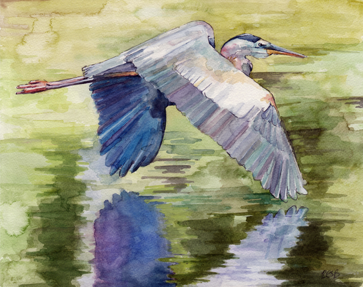 Blue-Heron-web.png