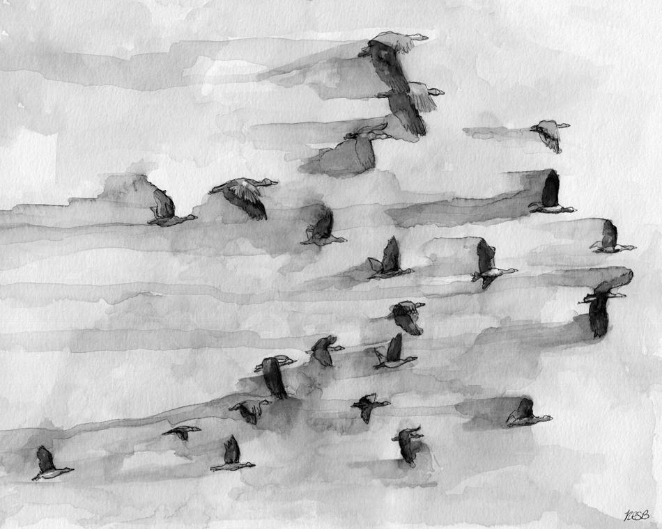 flock-web.png