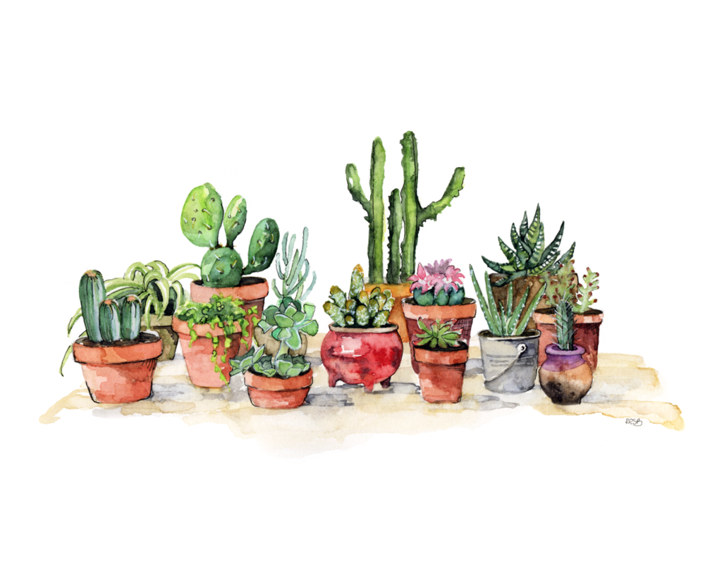 potted plants.png